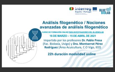 Análisis filogenético / Nociones avanzadas de análisis filogenético