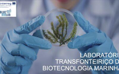 Segunda Newsletter do Bluebiolab