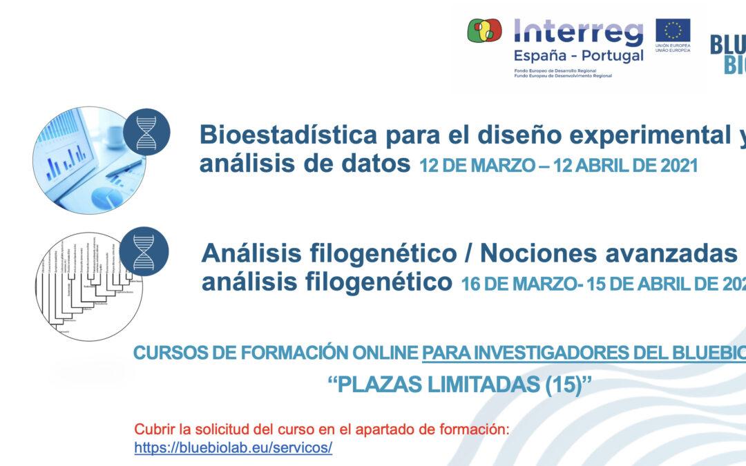 """Os cursos """"Bioestatística para desenho experimental e análise de dados"""" e """"Análise filogenética / Noções avançadas de análise filogenética"""" estão com inscrições abertas"""